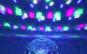 Glob disco