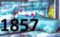 Pachet promotional 3 lenjerii de pat 3D