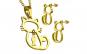 Set auriu din inox