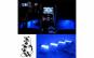 Lumini ambientale
