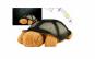 2 Lampi de veghe twilight turtle