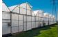Folie solar 10.5m latime x 20m lungime