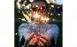 Artificii sparklers set 10 bucati Black Friday Romania 2017