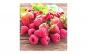 Set 30 lumanari parfumate - aroma fructe