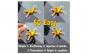 Kit Reparatie Parbriz Auto Techstar®
