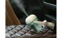 Difuzor odorizant pentru masina