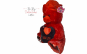 Urs de plus Valentine's Day 37 cm