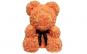 Ursulet  Rose Bear
