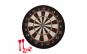 Set joc darts cu tinta Velcro si accesorii SD04