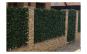 Gard lemn cu frunze