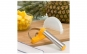 Dispozitiv ananas