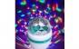 Pachet disco: glob + bec